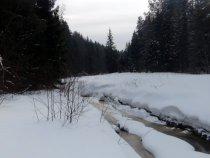 Снег закис на речке.