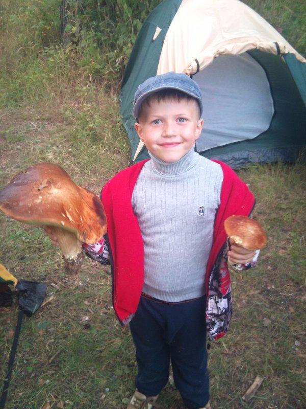 Два гриба, две сковороды))