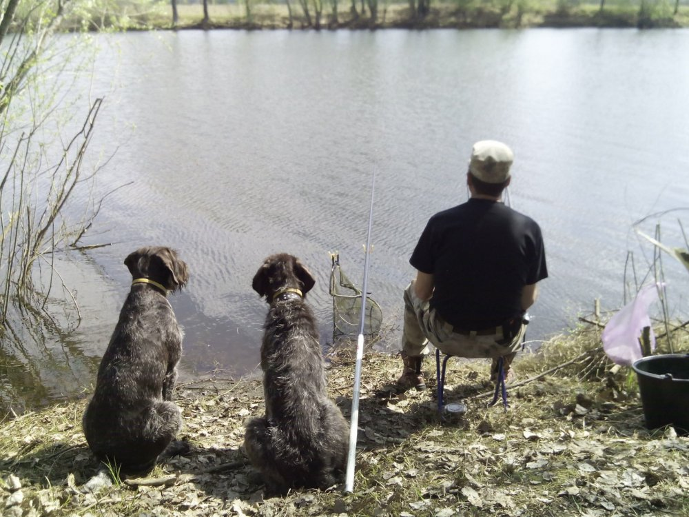 Тайра и Реси на рыбалке