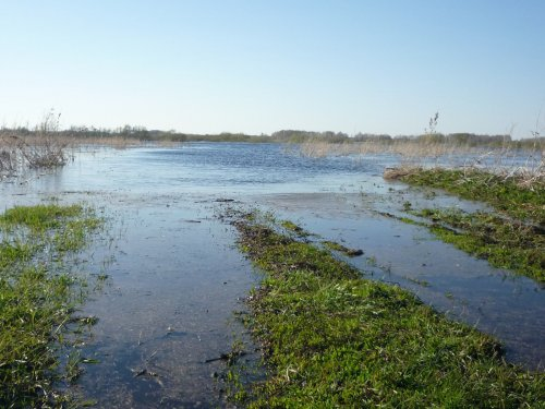 Разливы реки Тартас.