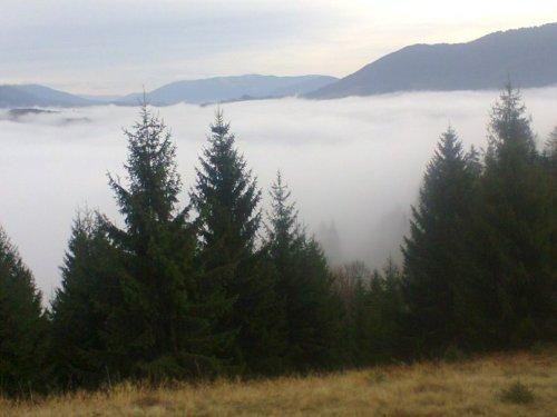 туман в капатах