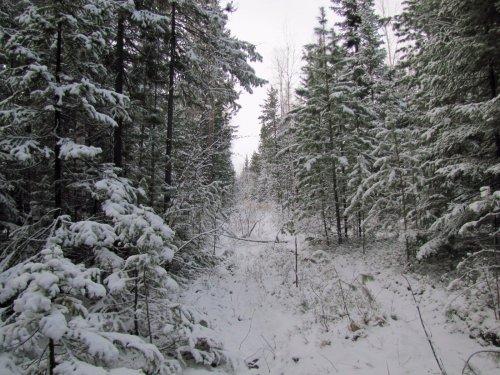 Май в Восточной Сибири