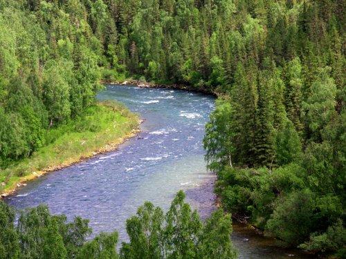 Алтай, Река Кокса