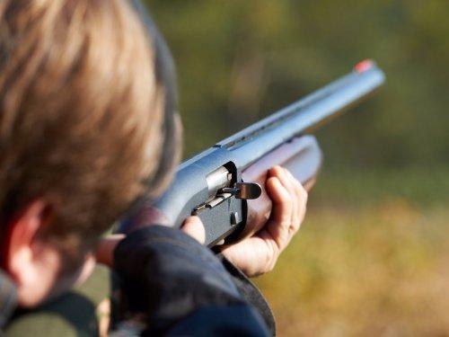 Открытые и коллиматорные охотничьи прицелы: краткий курс