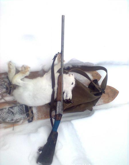 Ружьишко, лыжи, старый рюкзачок.