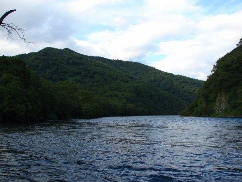 Река Быстрая (приток Большой) Камчатка июнь 2016