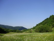 Одинокая изба в горах