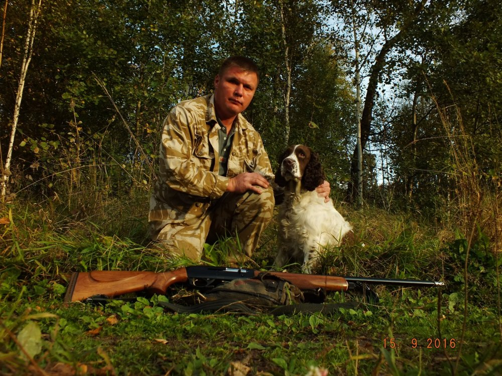 лесу фото с охоты сайт сибирский охотник дорог построение маршрутов