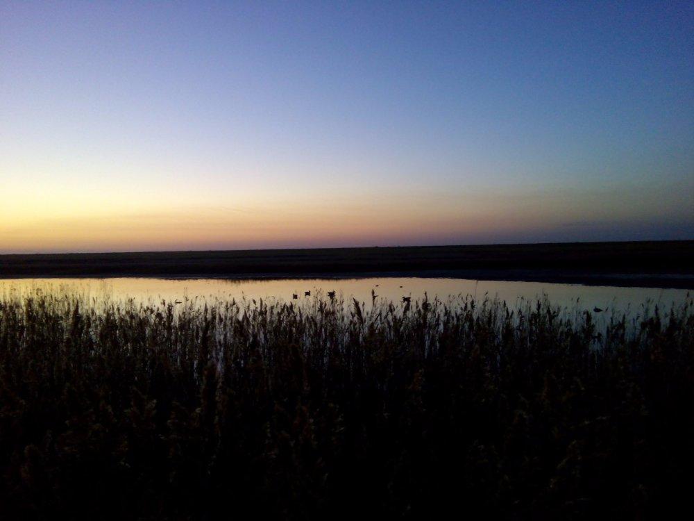 Рассвет, место охоты