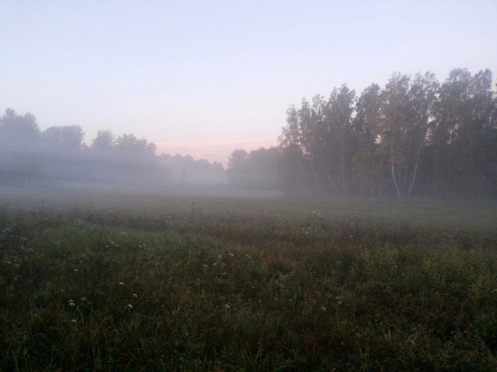 Туман в полях!!!