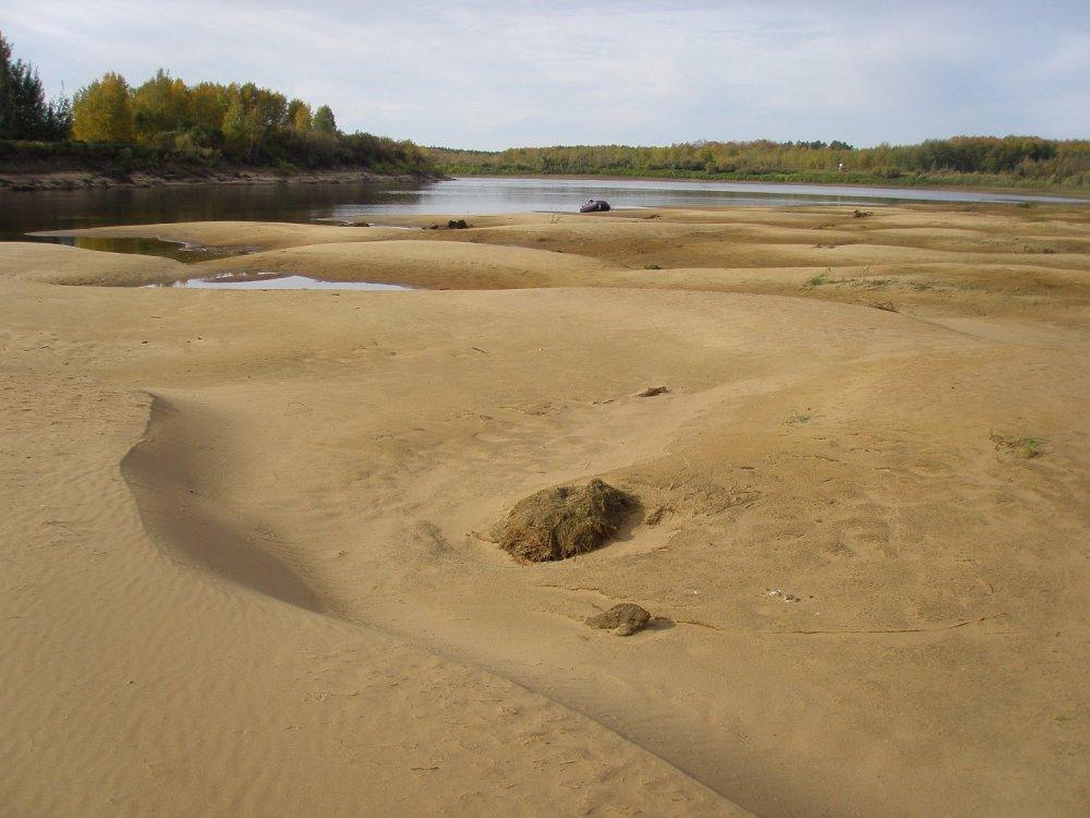 Пески Васюгана