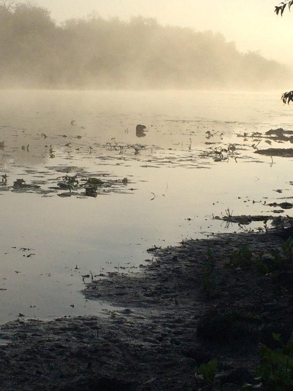 Туман, вода, сентябрь...