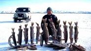 Блестящая рыбалка в Себян Кюеле. Девственные места