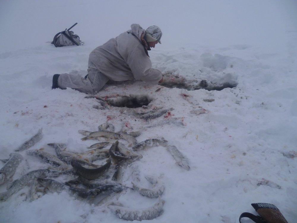 Были на охоте,а тут живун с рыбкой мешок руками наловил...