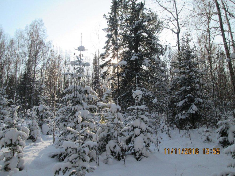 снежка навалило))