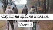 Охота на оленя и кабана: Часть 2.