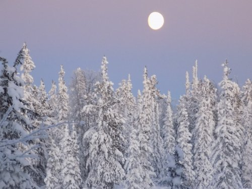 Луна и Сибирь