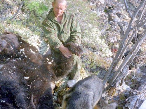 Медведь - разбойник.(Буториндо)
