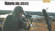 Охота на лося в Канаде