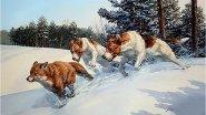 Охота на лисиц в Пензенской области