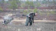 Охота на утку с лайкой.