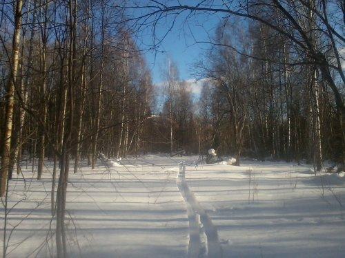 охота в мороз