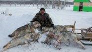 Охота на волка. Из цикла |Охотничьи истории|