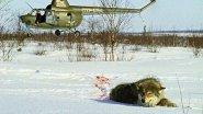 Охота на Волков! Суровые таёжные края.