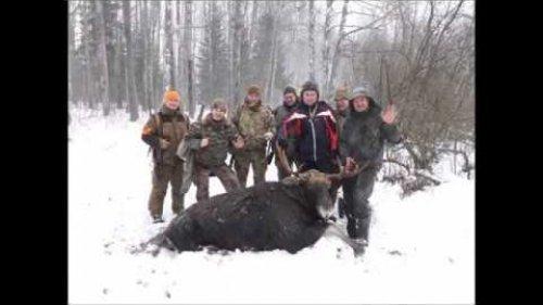 Зима форумчан 2016 - охота и природа Всея Руси