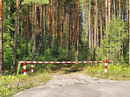 В Госдуму внесен проект о введении платы за посещение природных парков