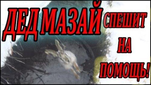 Охота на зайца ( дед Мазай спешит на помощь! )