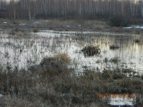 Фотоотчет о весенних охотах.