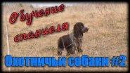 Охота с собакой. Обучение и воспитание русского охотничьего спаниеля