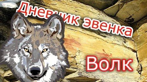 Волк .