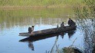 За хариусом по Амылу. Сказочная весенняя рыбалка.
