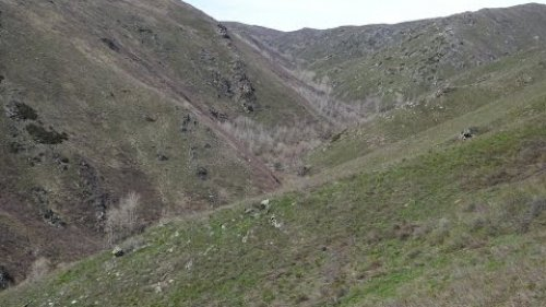 Охота на медведя в Казахстане