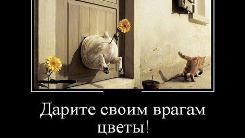 ЮМОР НА ОХОТЕ И РЫБАЛКЕ )))