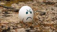 22 lr. Расстрел яиц.Fusillade eggs.
