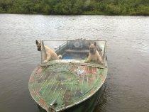 Два капитана)