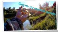 Ловля окуня на малой реке