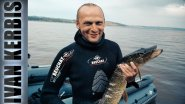 Первый опыт подводной охоты новичка на Красноярском водохранилище