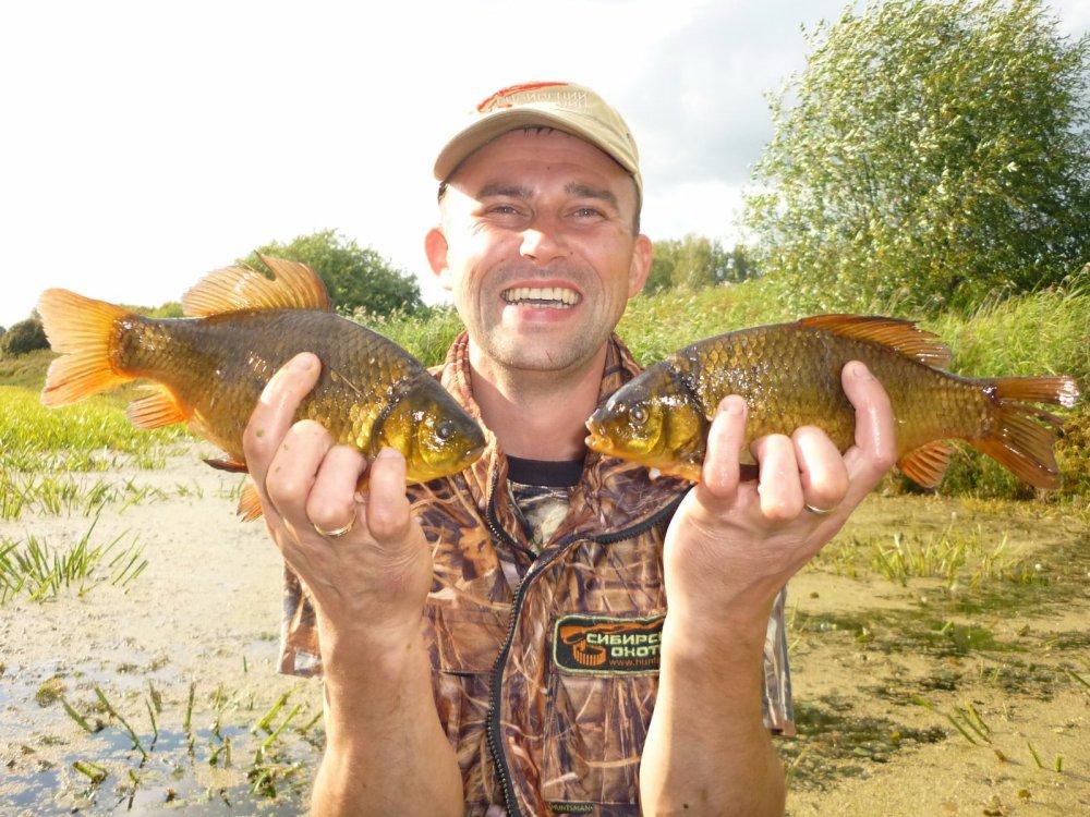 Золотые рыбки.....