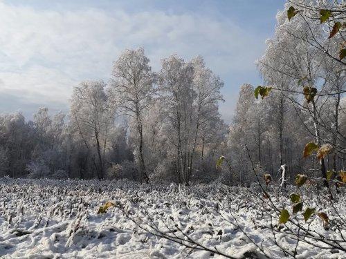 Сентябрьская зима