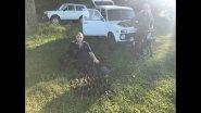 Охота на перепёлку с легавыми собакамив Сочи