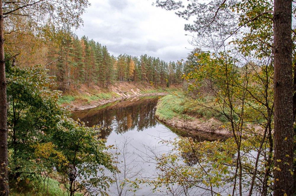 Осенняя речка.
