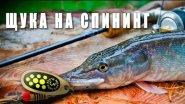 Рыбалка лето 2017. Ведро щуки. Щука на спиннинг. Рыбалка на щуку.