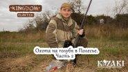 Охота на голубя в Полесье.  Часть 2