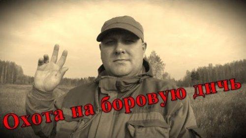 Охота на боровую дичь. По полям с русским спаниелем. Охота на рябчика с манком и с подхода
