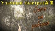 Удачный выстрел#1. Охота на рябчика с русским спаниелем.