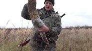 Открытие охоты с дратхааром на зайца 2017, Московская область.